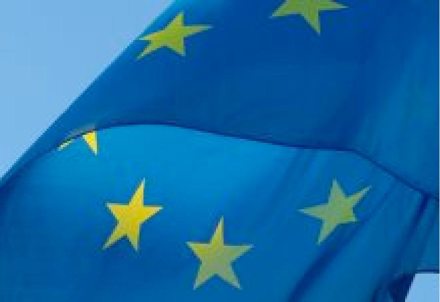 EU Industriestrategie: Verpasste Chance statt ambitionierter Umbau EN